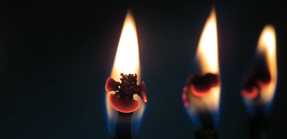 Kynttiläkuvaaja eli candlestick chart